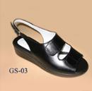 GS 03