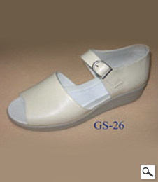 GS 26
